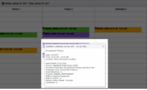 Calendar Session Details Pop Up